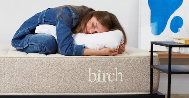 best organic pillow review birch